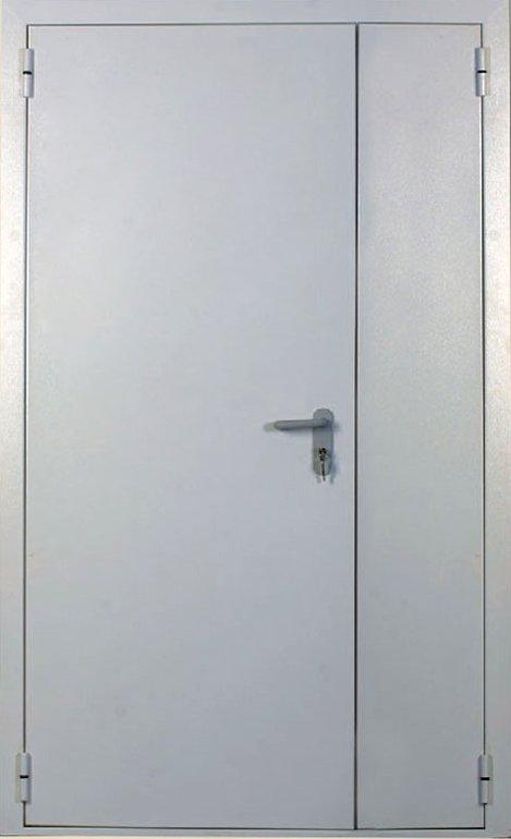 дверь металлическая огнестойкая внутренняя двупольная